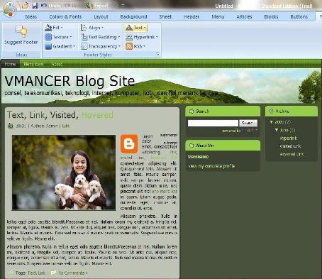 artisteer-making blogger template-vmancer-4
