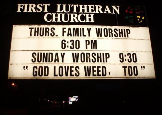 GOD LOVES WEED, TOO