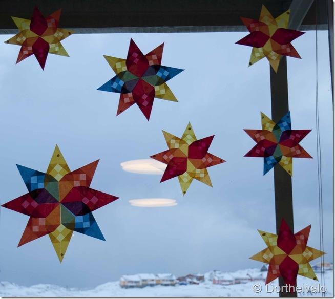 stjernedrys