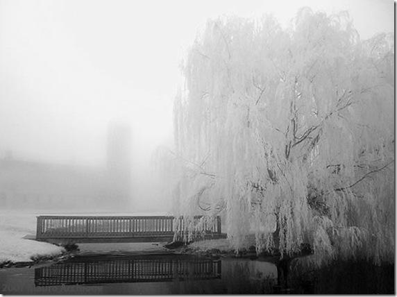 Bridge_Pond_S2_fs