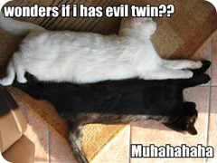 wonders-if-i-has-evil-twin-muhahahaha