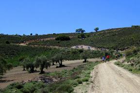 Marcha MTB Aranjuez