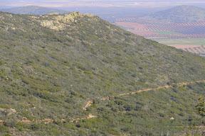 Sierra Luenga