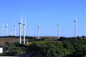 Molinos de viento en Vejer de la Frontera