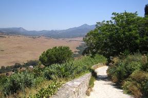 Alcalá de los Gazules y Alcornocales