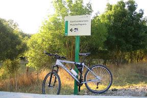 cicloturista picacho-peguera