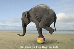 life-balance
