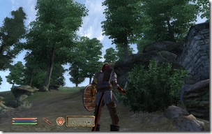 ScreenShot13
