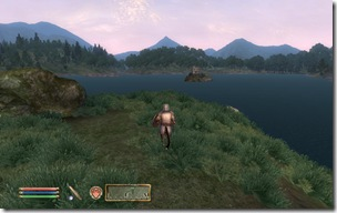 ScreenShot110