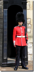 guard 250x531