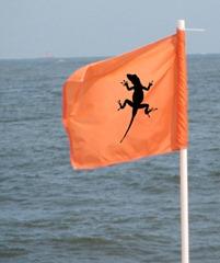 Linchpins are everywhere. Raise the flag.