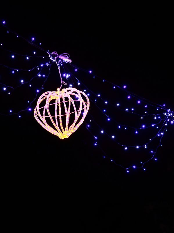 2010台灣燈會小記錄