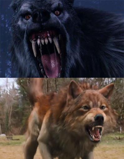 Werewolf  Wikipedia