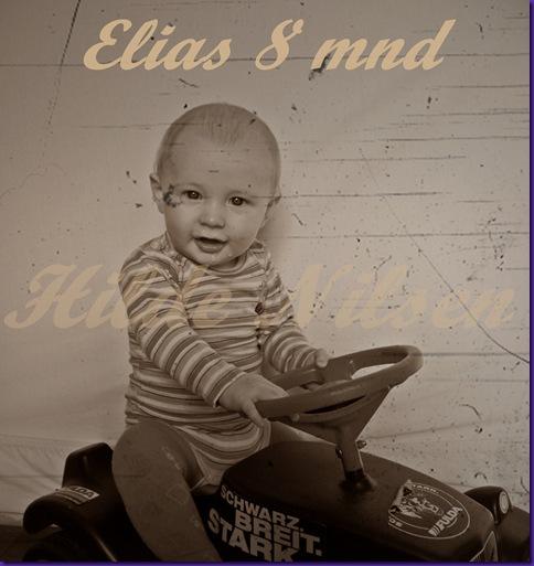 Elias 8 mnd