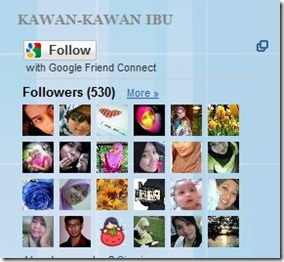530-follower-nov2010