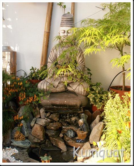 fuente terraza 2