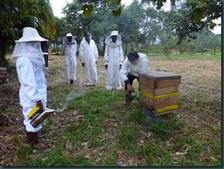 July 2010 beekeeping and KCPS 003