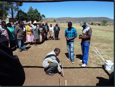 Lesotho 188