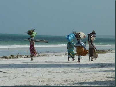 Zanzibar 090