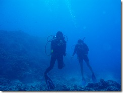 ハワイ島ダイビングの写真