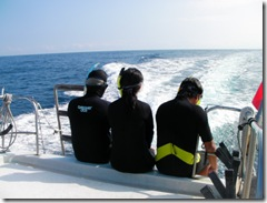 ハワイ島家族でイルカと泳ぐ