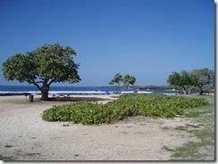ハワイ島・ビーチ