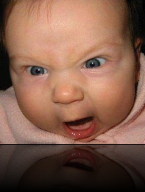 angry-young-baby-lolz-wallpaper