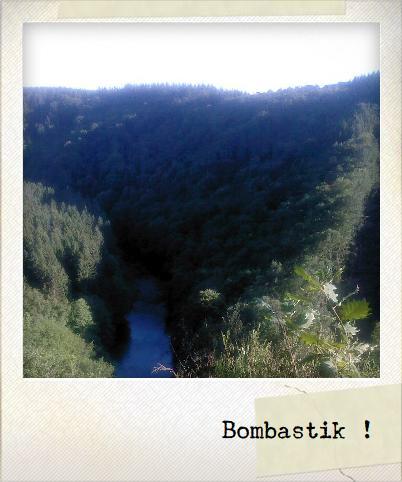http://lh3.ggpht.com/_MN_0wch910s/TDriCjqKJqI/AAAAAAAAHeA/GHki35qNlpc/Photonote1.jpg