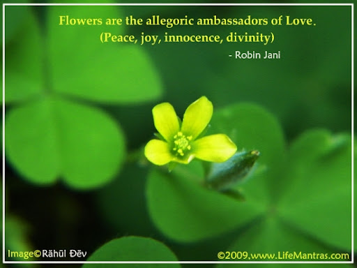 Flowers are the allegoric