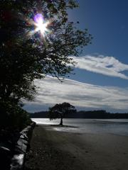 Whananaki Estuary