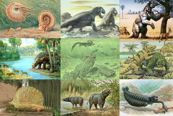 Triassic Animals List