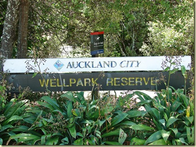 wellpark1