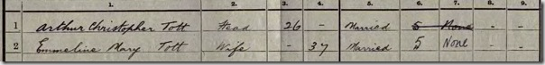 1911Census-zoomedin