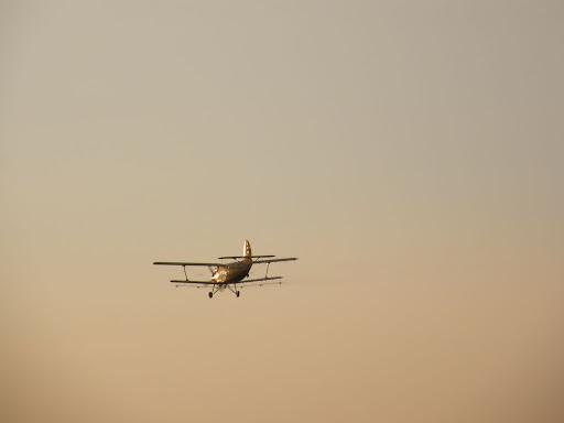 repülőgép, permetezőgép, Budapest, naplemente, blog