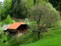 Domačija Buven med Cicljem in Murovico