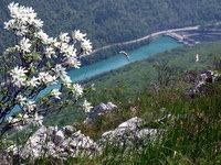 Pogled na hidroelektrarno Solkan