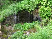 Vodna zavesa na levem bregu Bistrice
