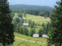 Pogled na planino Uskovnica