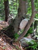 Kakšna je verjetnost, da se skala med kotaljenjem po pobočju zagozdi takole?