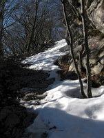 Sneg na poti od Sv. Brica na vrh