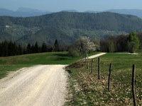 Sadna cesta med Javorom in Jančami
