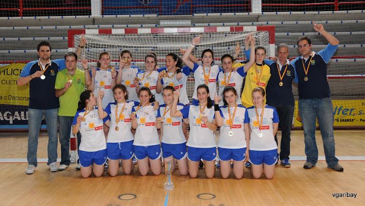 Caja Burgos Aula, Campeón de España