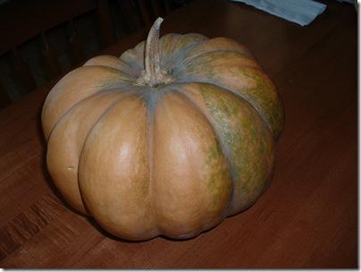 Fairy Tale Pumpkin 001