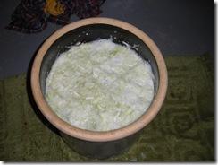 Sauerkraut 101 021