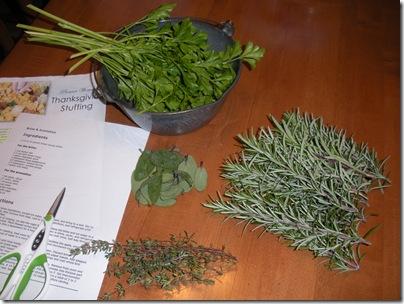 fresh herbs 002