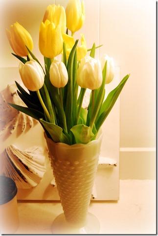 new year's tulips