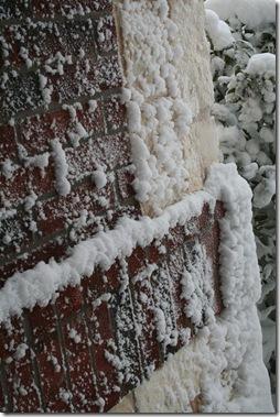 Snow 3.21.10 009