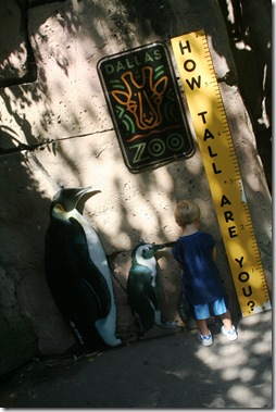 Dallas Zoo 028