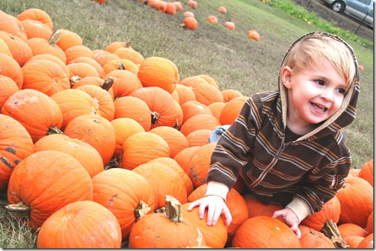 Pumpkin Patch 09 054