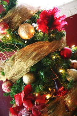 pre-Christmas 2010 036